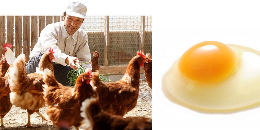 平飼いで育てられた鶏の卵